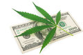 The Cannabis And Money Royalty Free Stock Photography - 81675867