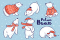 Polar Bears Collection In Red Sweater, Scarf And Hat. Royalty Free Stock Images - 81683249