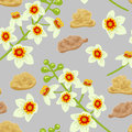 Frankincense Seamless Pattern. Boswellia Tree Flowers. Stock Photography - 81696312