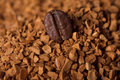 Natural Coffee Bean And Instant Cofee Stock Photos - 8172463