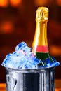 Champagne Bottle In A Bucket Stock Images - 8176354