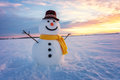Snowman Royalty Free Stock Photography - 81776747