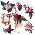 Collection Of Vector Roses And Leafs For Design Stock Images - 81802484