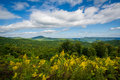 View From Highway 181, In Pisgah National Forest, North Carolina Stock Photo - 81857080