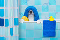 Dog In Shower Stock Photo - 81869900