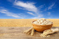 Oatmeal In Ceramic Bowl Royalty Free Stock Image - 81884276
