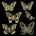 Gold Lace Butterfly On Black Background Royalty Free Stock Photos - 81884828