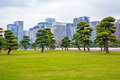 Oriental Park In Tokyo Royalty Free Stock Image - 81897056