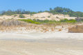 Vegetation Over Dunes  At Itapeva Park In Torres Beach Stock Images - 81899324