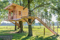 Wooden Tree House In Oak Tree With Grass Stock Photo - 81926620