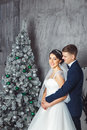 Winter Wedding .Lovers Bride And Groom In Christmas Decoration . HGroom And Bride Together. Couple Hugging. Wedding Day. Stock Image - 81971051