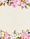 Pink Flowers - Apple, Cherry Blossom. Floral Frame. Watercolour On Paper Royalty Free Stock Image - 81976026