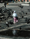 Children And Pigeons Stock Images - 829054