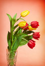 Red And Yellow Tulips Stock Photography - 8200002