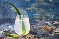 Sparkling Cucumber Mint Gin And Tonic Fizz With Aloe Vera On Marble Table. Copy Space. Dragon Tail Cocktail For Fans Party. Royalty Free Stock Photography - 82144647