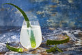 Sparkling Cucumber Mint Gin And Tonic Fizz With Aloe Vera On Marble Table. Copy Space. Dragon Tail Cocktail For Fans Party. Royalty Free Stock Image - 82153526