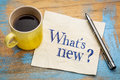 What Is New Question On A Napkin Stock Image - 82196321