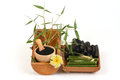 Fresh And Dried Bamboo And Bamboo Charcoal Powder. Stock Image - 82225891