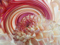 Dahlia Flower On The Background Of Rainbow Spiral. Floral Composition. Floral Background. Stock Photo - 82226770