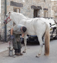 Horse Farrier Working In The Morning Royalty Free Stock Photography - 82272037