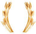 Ears Of Wheat. Frame Royalty Free Stock Photo - 82317875