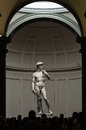 David By Michelangelo ,Florence-Italy Stock Photography - 82334202