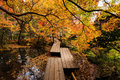 Tenju-an Temple With Autumn Garden, Kyoto Royalty Free Stock Photography - 82362597