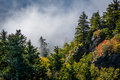 Trees And Fog Illuminated By The Sun, At Grandfather Mountain, N Royalty Free Stock Photos - 82374008