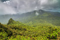 Panoramic El Yunque Stock Image - 82411011