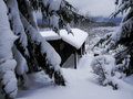 Forest Cottage In A Winter Royalty Free Stock Photos - 8256248