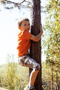 Little Cute Real Boy Climbing On Tree Hight, Outdoor Lifestyle C Royalty Free Stock Photo - 82537225