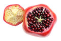 Ripe Pomegranate And Intact Grains. Royalty Free Stock Photography - 82598487