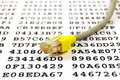 Network Cable And Encryption Key Stock Photography - 8262342