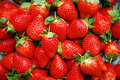 Strawberries Royalty Free Stock Photography - 8262957
