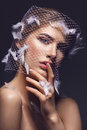 Beautiful Girl In Veil With Feathers Stock Photo - 82709430