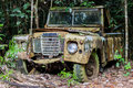 Rusty Old Car In Jungle Stock Photos - 82774463