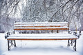 Park Bench And Trees Covered By Heavy Snow Royalty Free Stock Images - 82787109
