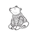 Hand Drawn Outline Print With Polar Bear In Winter Sweater Royalty Free Stock Photography - 82914357