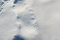 Snow Surface Background Royalty Free Stock Photo - 82997825