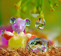 Droplets Toys Royalty Free Stock Photography - 83035517