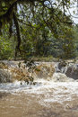 A Small River In Kakamega Forest. Kenya Royalty Free Stock Images - 83043479