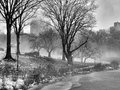 Central Park, New York City Foggy Morning Royalty Free Stock Photography - 83065177