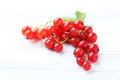 Currant Stock Photography - 83093722