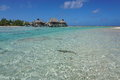 Shallow Water Of Lagoon Bungalows French Polynesia Royalty Free Stock Photography - 83241877