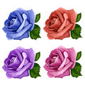 Rose Buds Blue, Pink, Purple And Red. Vector Royalty Free Stock Photography - 83326637