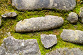 Stones Of An Ancient Path And Moss Stock Photography - 83350652