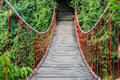 Bridge In Forest Royalty Free Stock Photo - 83361705