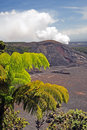 Stock Image Of Hawaii Volcanoes National Park, USA Stock Images - 83375244