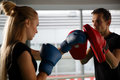 Young Competitors Trains In Boxing Royalty Free Stock Image - 83396726