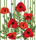 Poppy Seamless Stock Images - 8343384